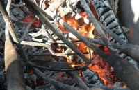 La Marque dans le feu